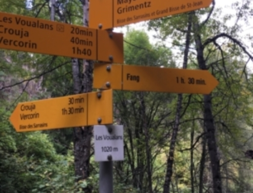 Google maps, signposts or a mountain leader?