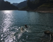 Swimming in mountainlake