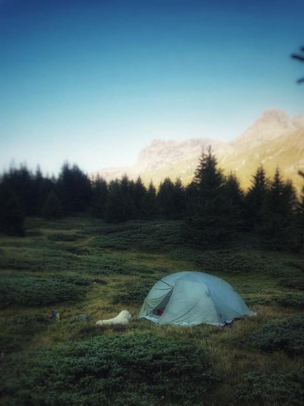 Tent in het bos