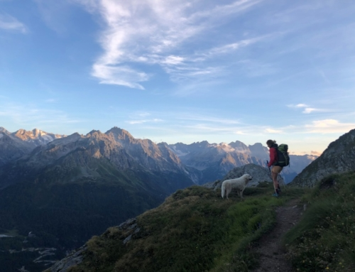 Tips for hiking in the Alps